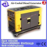 portable diesel generator LP7000T/TA
